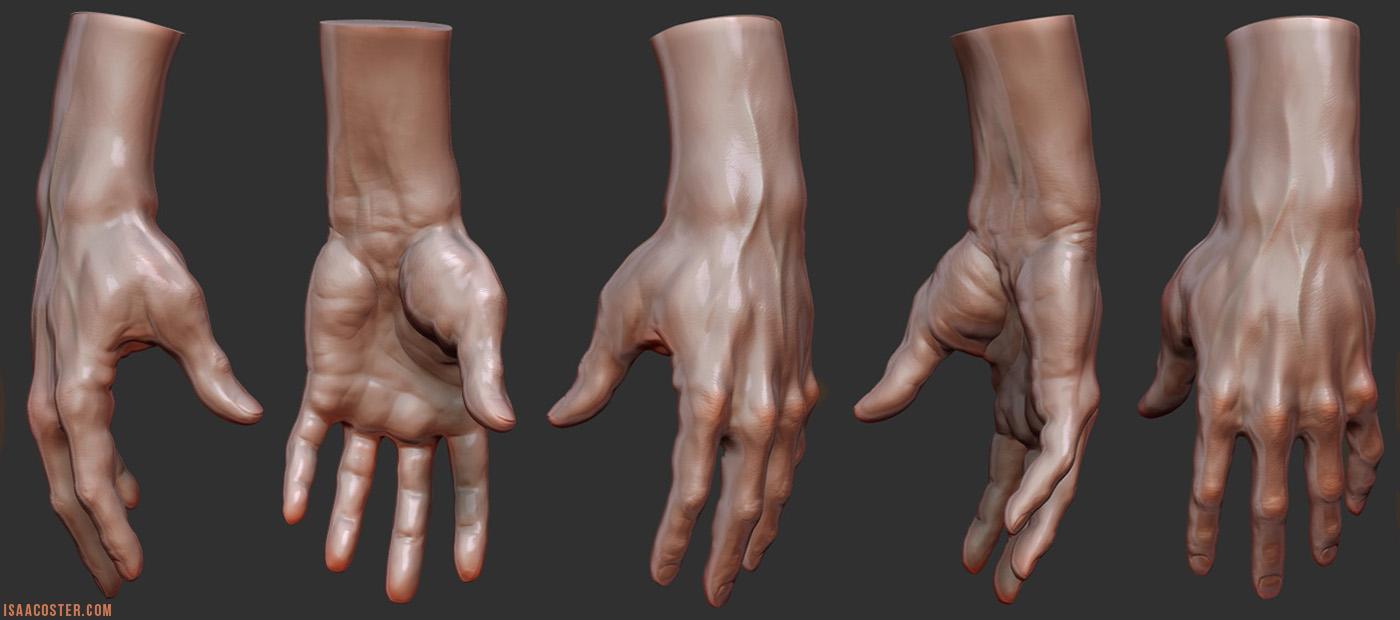 zbrush_hand_11