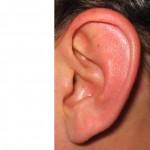 ear_01